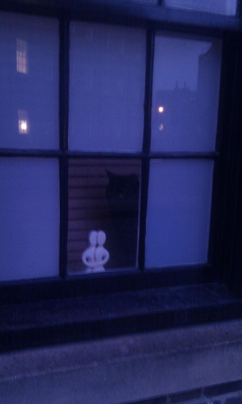 Schwarze Katze im Fenster eines Stadthauses beim Spital Field Market